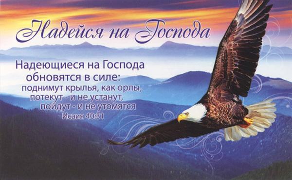 ракурс девушка орловские поздравления с днем рождения теста для